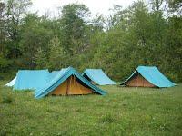 https://sites.google.com/a/areaverdebuttigliera.it/area-verde-rosa-luxemburg-b-a/galleria-fotografica/SL380701.JPG